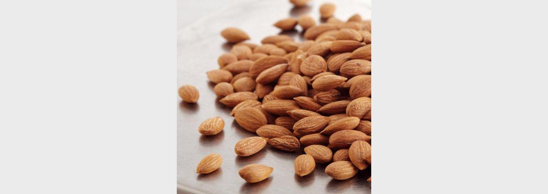 Nødder – god næring og smag